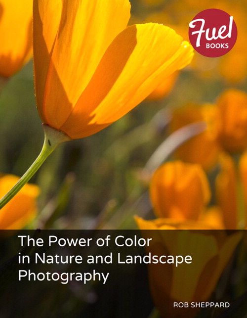 Power of Color in Nature and Landscape Photography, The