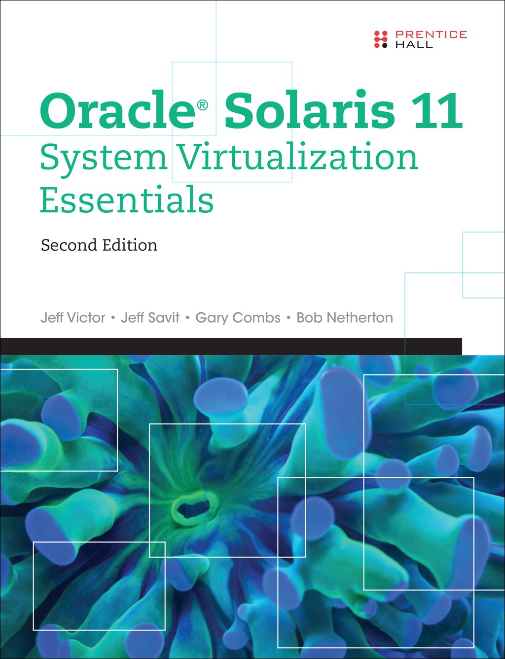 Oracle Solaris 11 System Virtualization Essentials