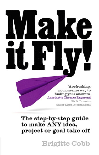 Make It Fly! PDF eBook: The step by step guide to make ANY idea, project or goal take off