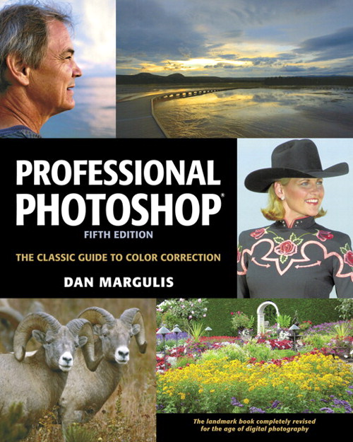 Professional Photoshop: The Classic Guide to Color Correction, Fifth Edition, 5th Edition