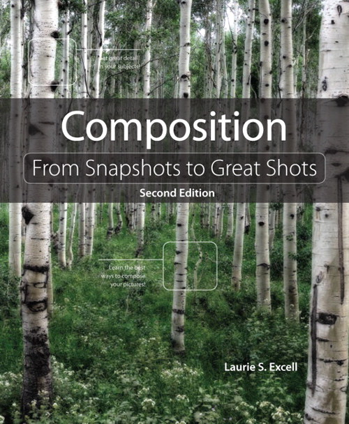 Composition: From Snapshots to Great Shots, 2nd Edition