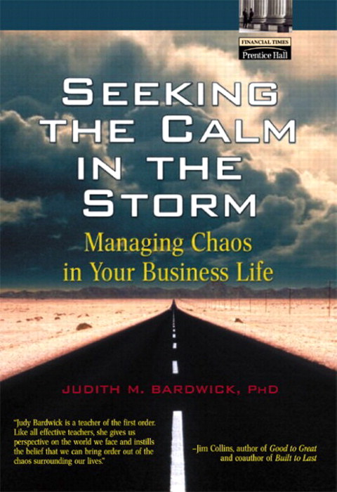 Seeking the Calm in the Storm: Managing Chaos in Your Business Life