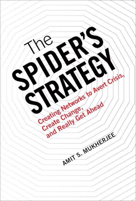 Spider's Strategy, The: Creating Networks to Avert Crisis, Create Change, and Really Get Ahead (paperback)