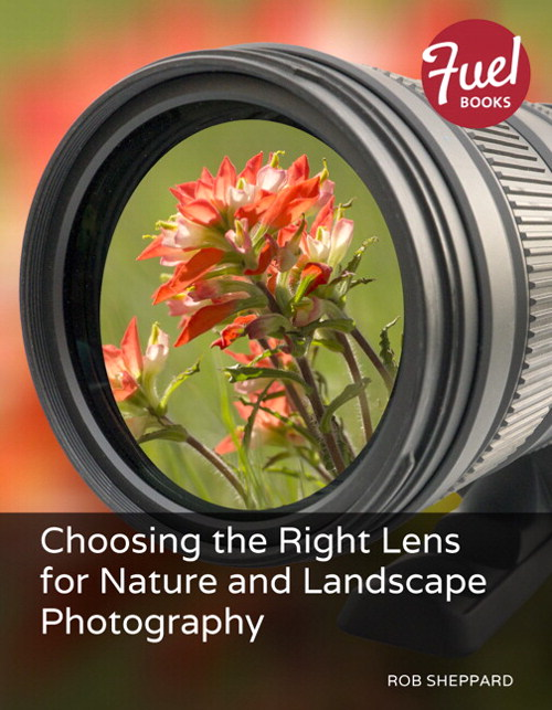 Choosing the Right Lens for Nature and Landscape Photography