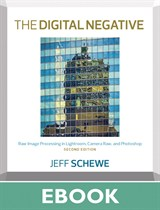 Digital Negative, The: Raw Image Processing in Lightroom, Camera Raw, and Photoshop, 2nd Edition