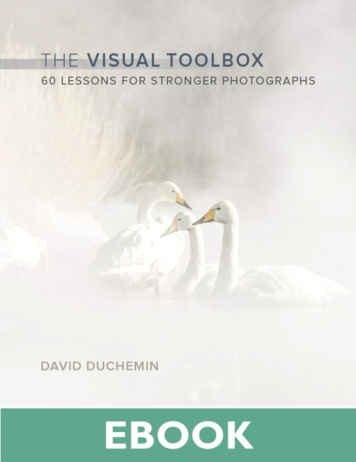 Visual Toolbox, The: 60 Lessons for Stronger Photographs
