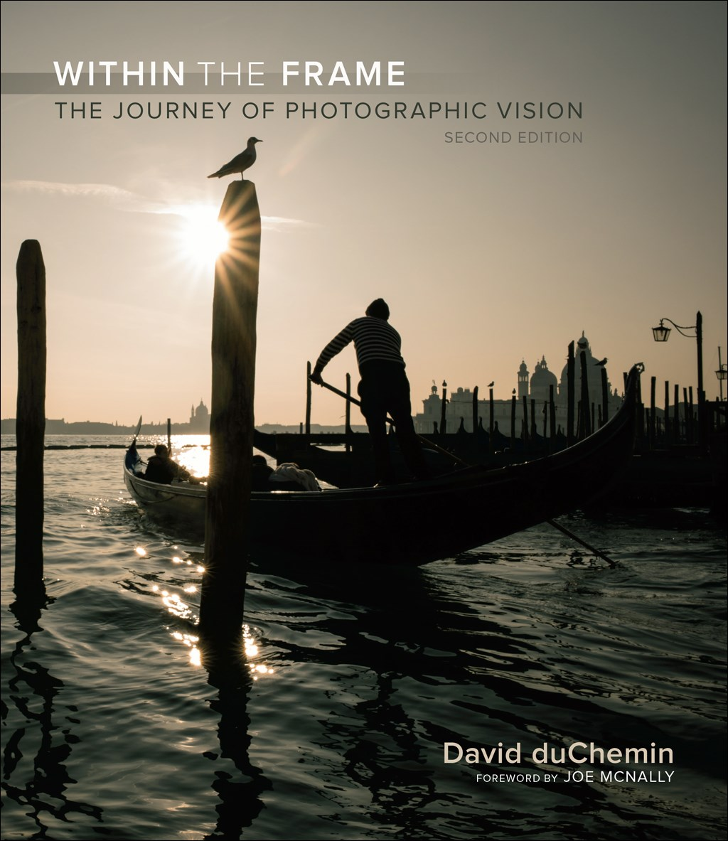 Within the Frame: The Journey of Photographic Vision, 2nd Edition