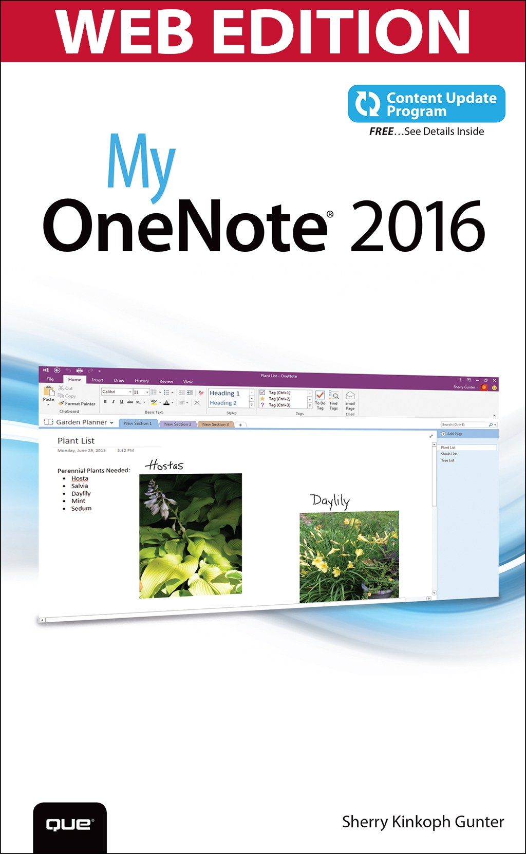 My OneNote 2016 (Web Edition with Content Update Program)