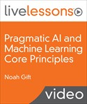 Pragmatic AI and Machine Learning Core Principles