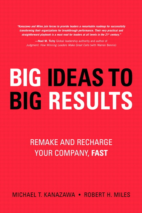 BIG Ideas to BIG Results: Remake and Recharge Your Company, Fast