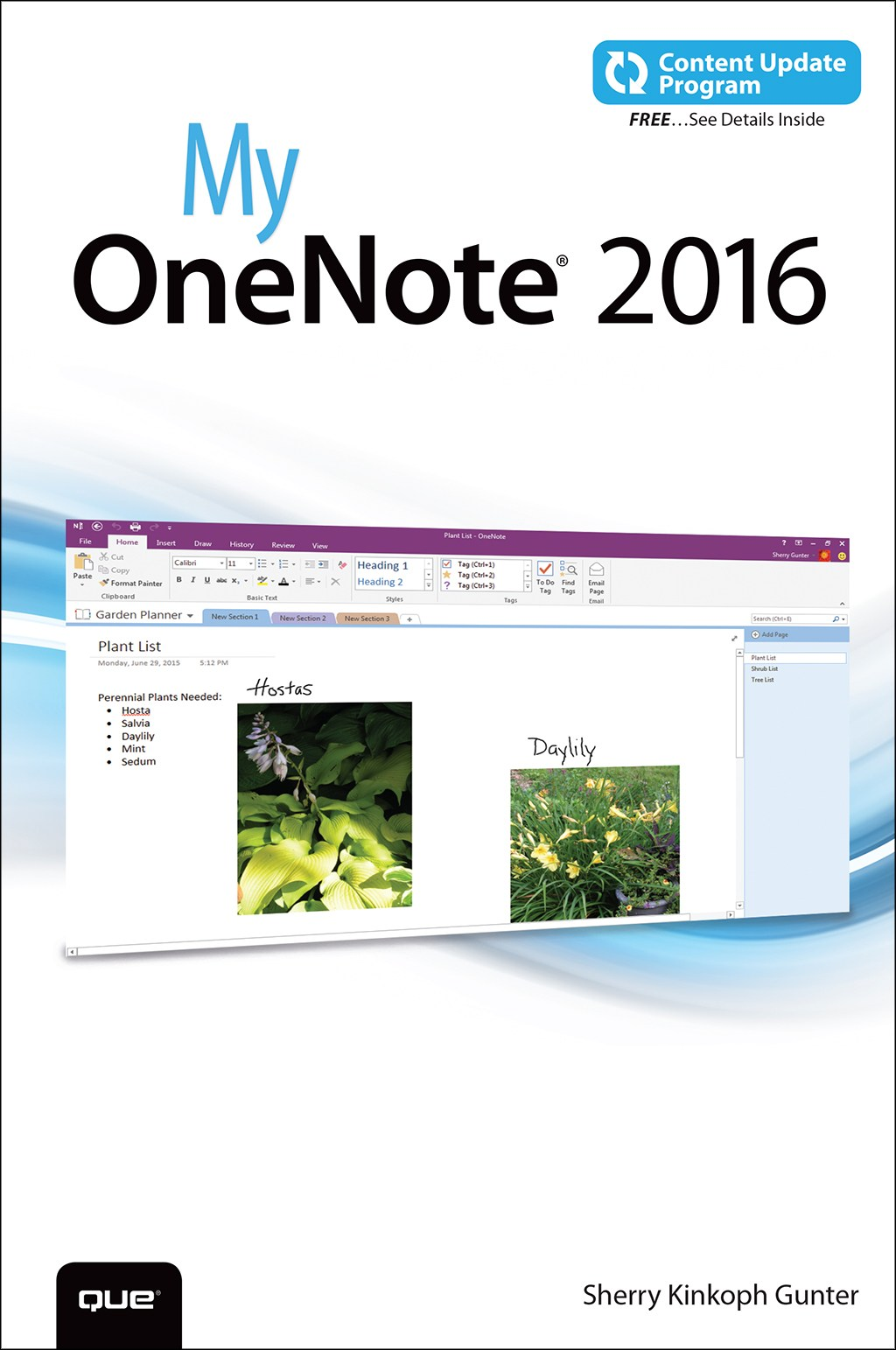 My OneNote 2016 (includes Content Update Program)